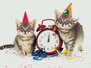 kittens clock