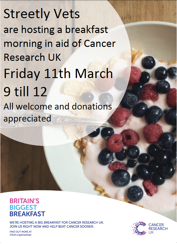 Cancer Research UK Biggest Breakfast