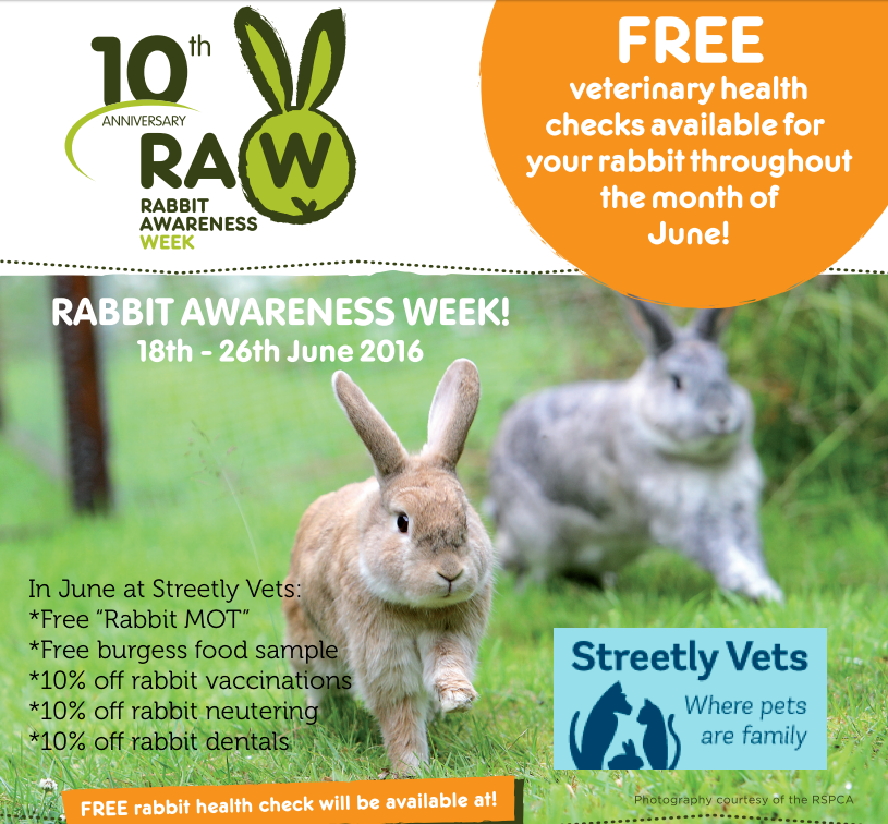Rabbit Month at Streetly Vets