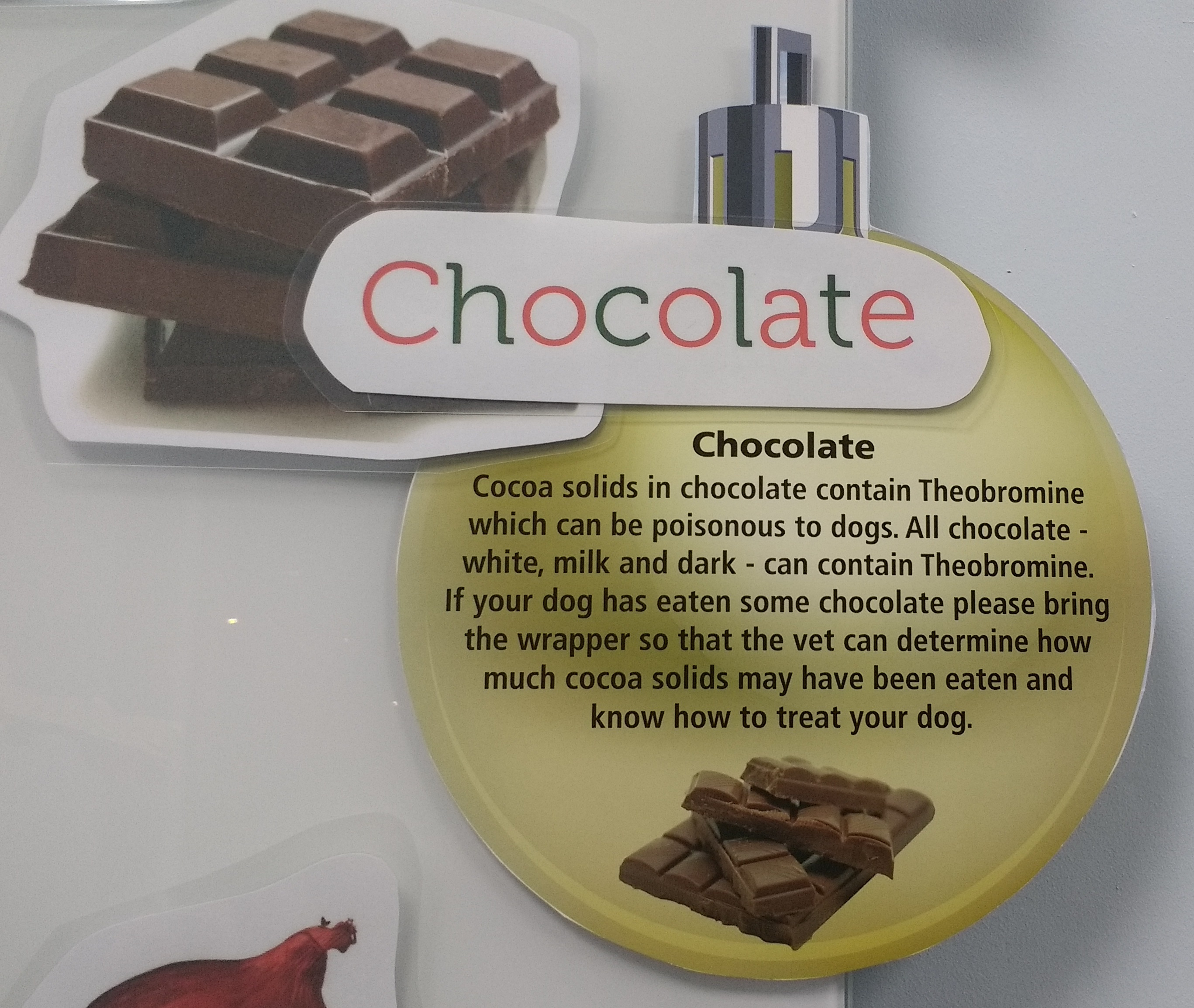 Chocolate can be poisonous to pets
