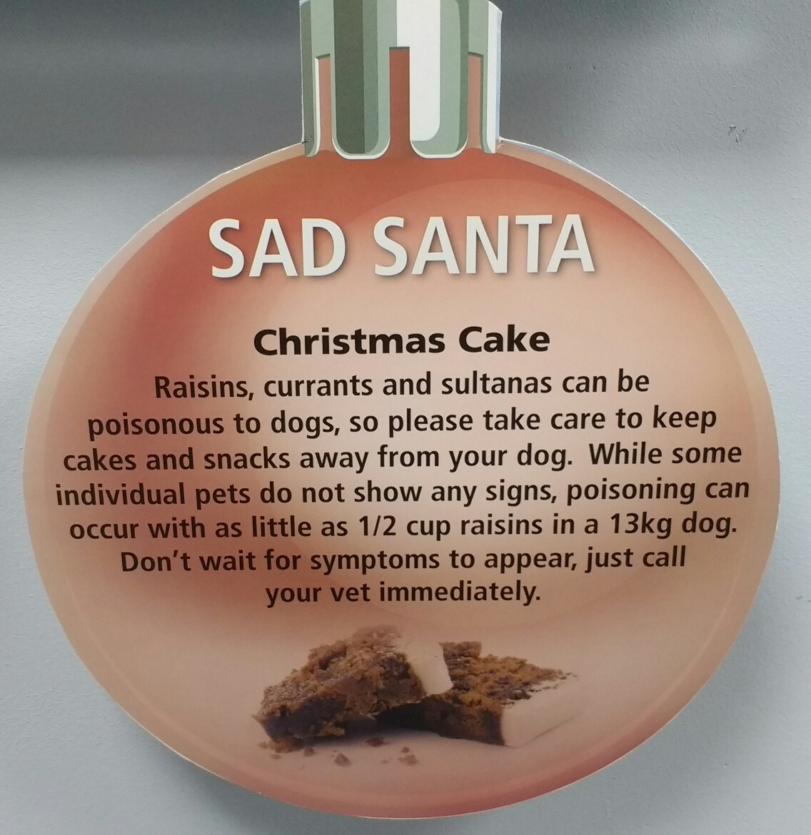 Don't let your pet eat the Christmas pudding